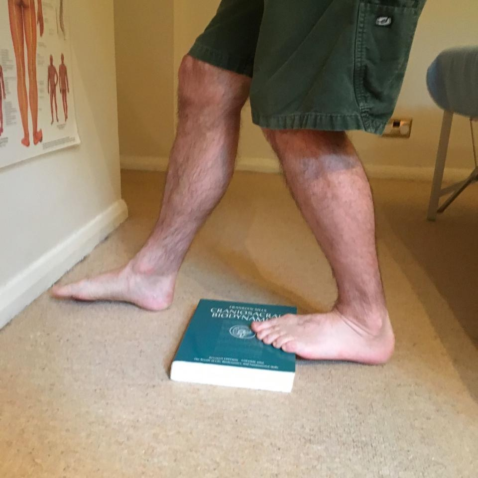 The Soleus is stretched if you bend your knee